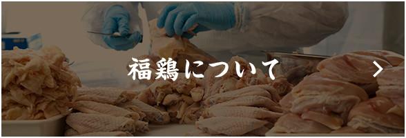 福鶏について
